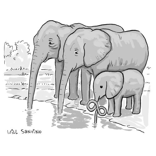 Cartoon of three elephants by Will Santino '11